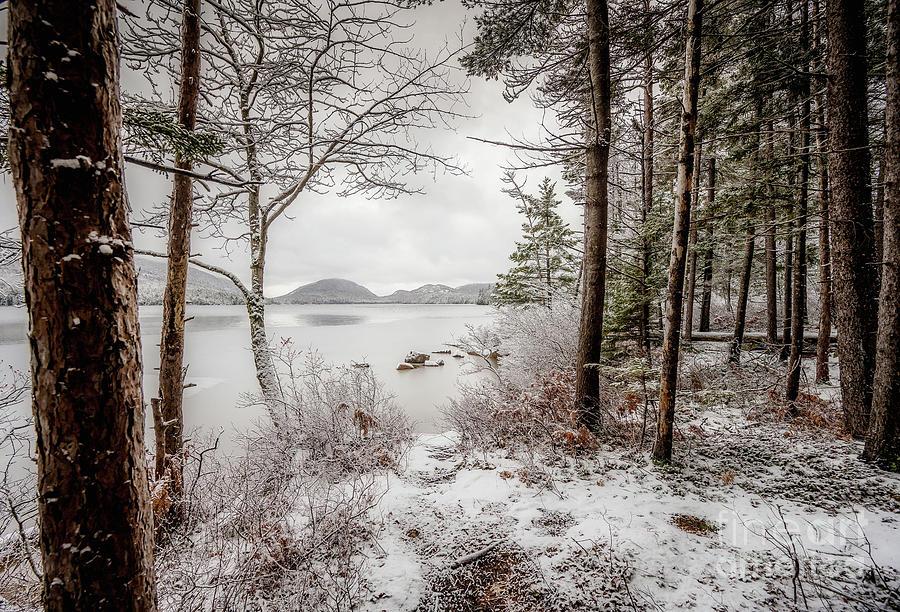 Fresh Snow by Susan Garver