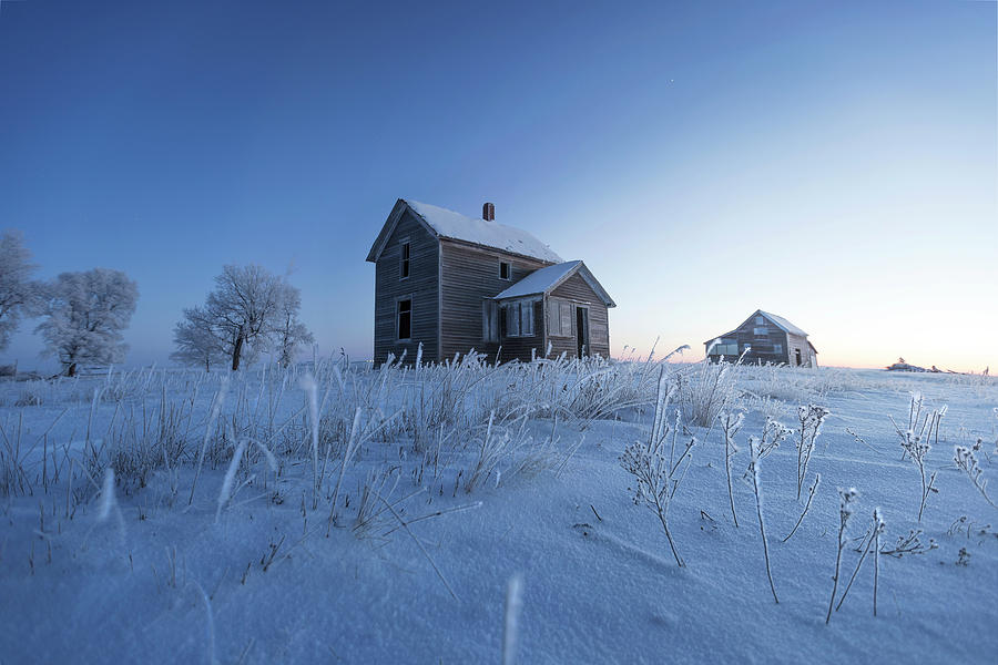 Montrose Photograph - Frosted by Aaron J Groen