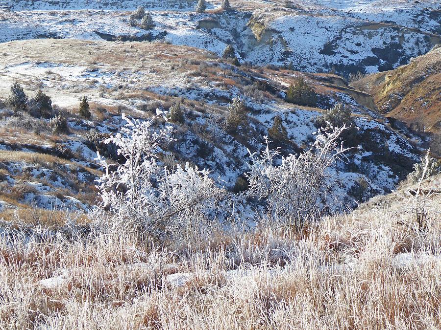 North Dakota Photograph - Frosty December in Dakota West by Cris Fulton