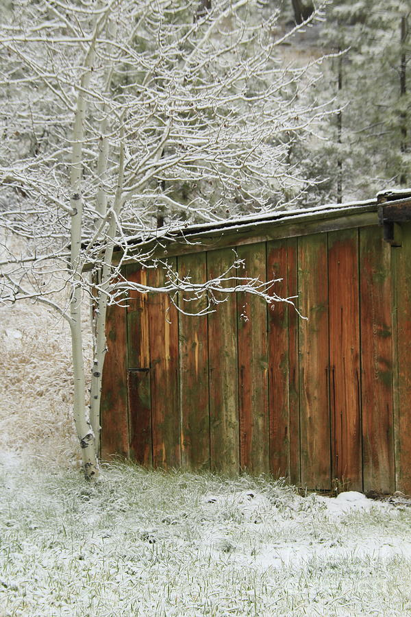 Sheds Photograph - Frosty Morning 1 by Roland Stanke