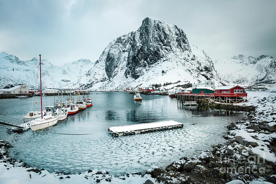 Frozen Harbor Photograph