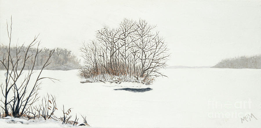 Frozen Island by Garry McMichael