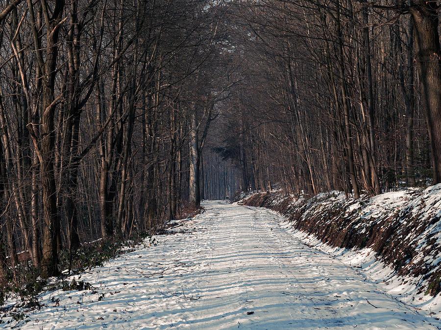 Road Photograph - Frozen Road by Jussi Laasonen