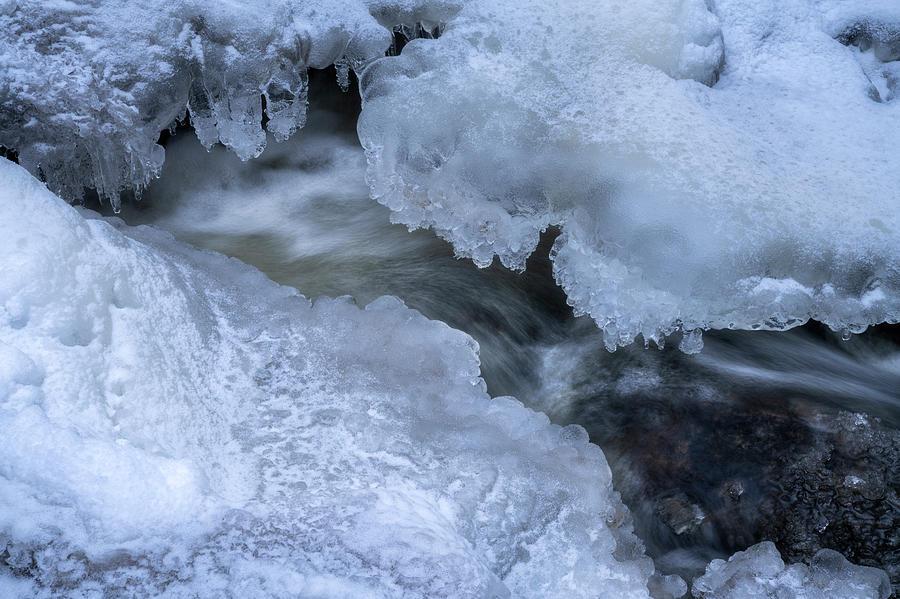 Frozen Stream Photograph