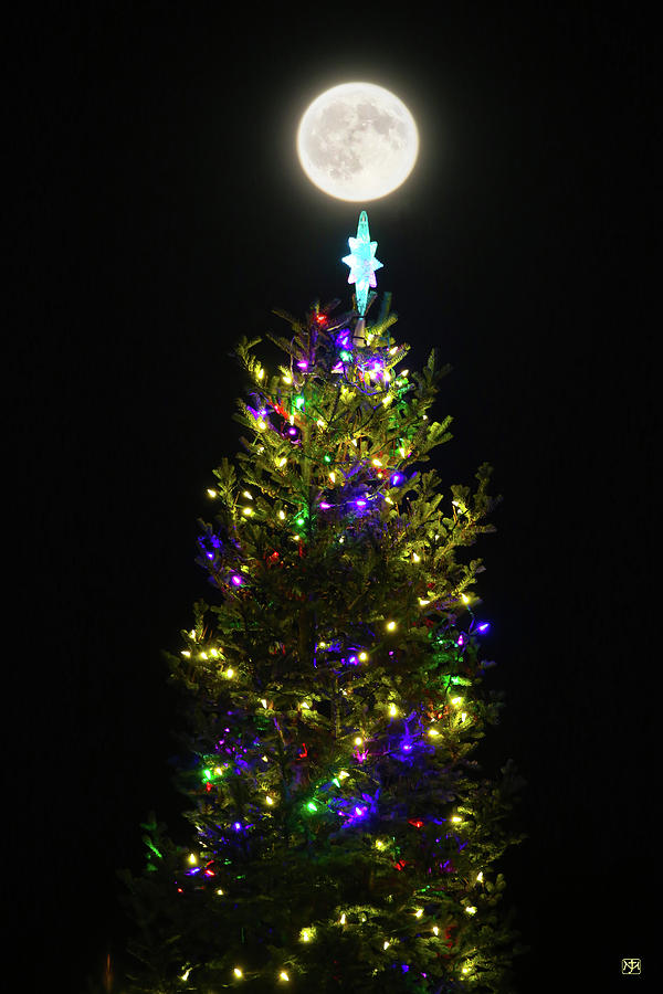 Full Christmas Tree Moon by John Meader