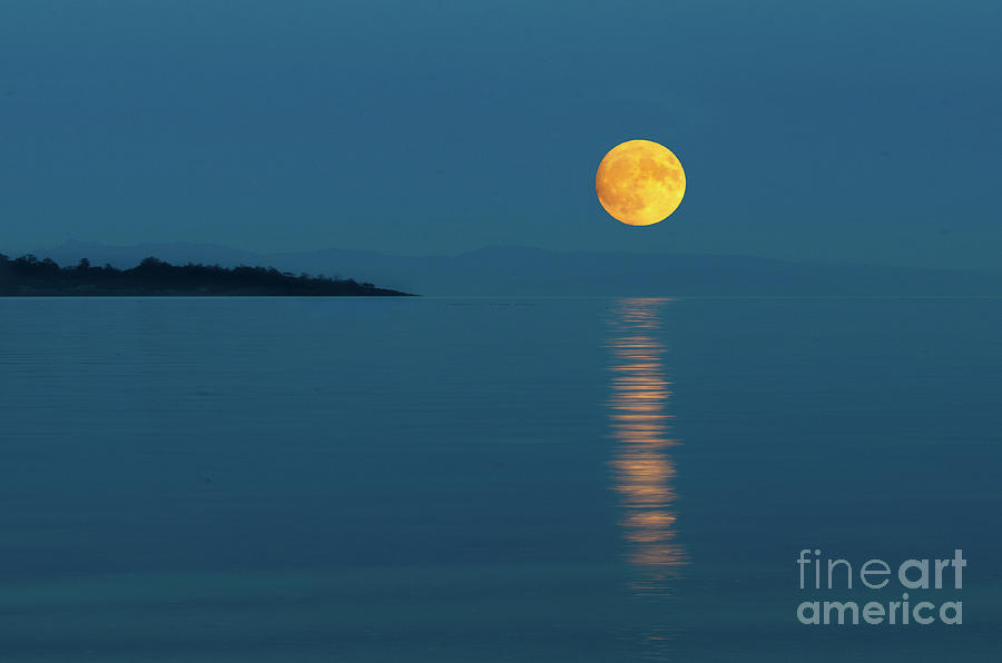 Full Moon Rising by Bob Christopher