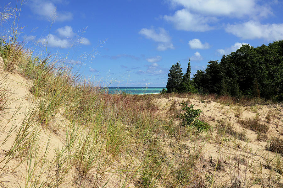Furnessville Blowout At Indiana Dunes State Park Photograph