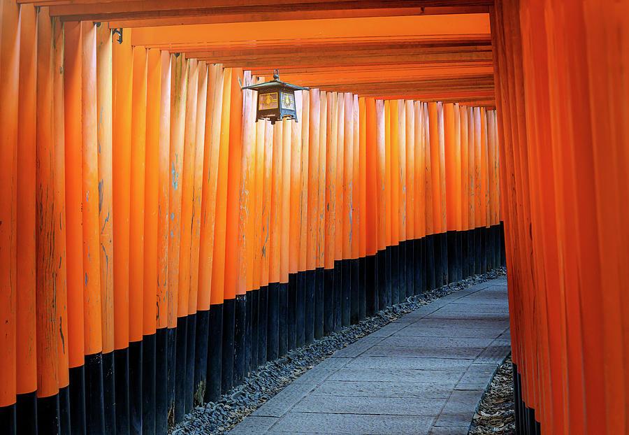 Fushimi Inari Shrine Kyoto Japan II Photograph