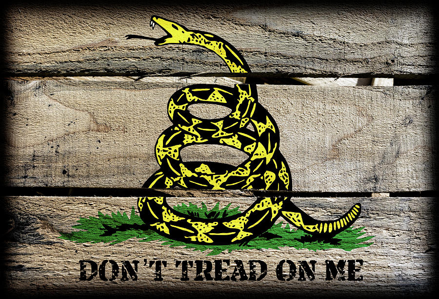 Gadsden Flag Don T Tread On Me Spirit Of The Independent American Digital Art By Daniel Hagerman