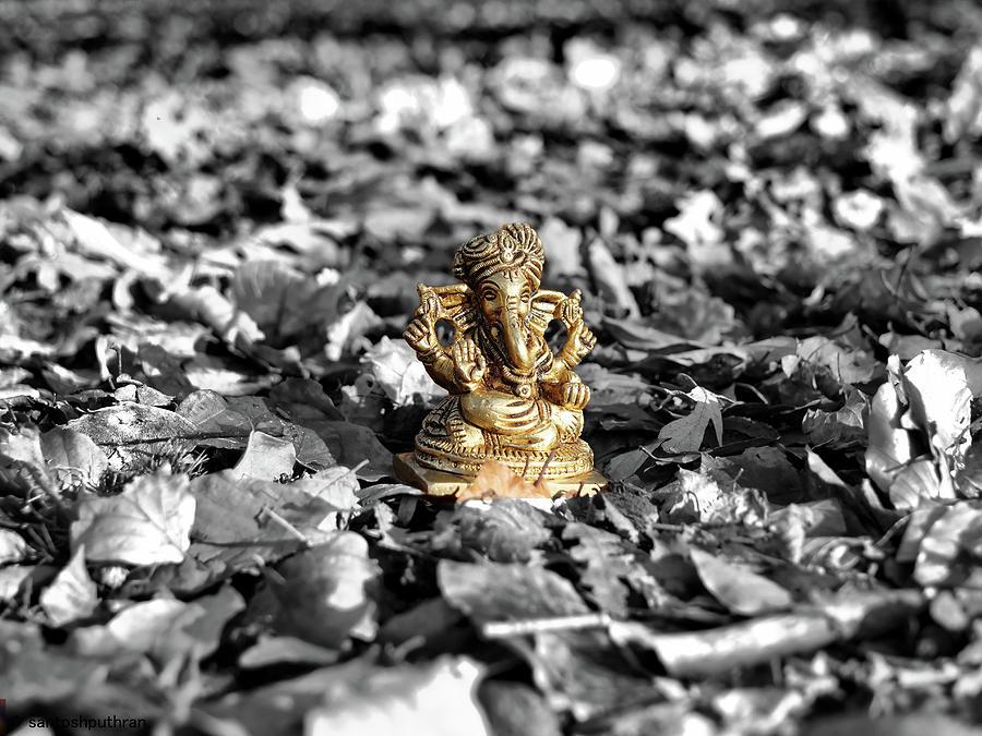 Ganesha in the woods by Santosh Puthran