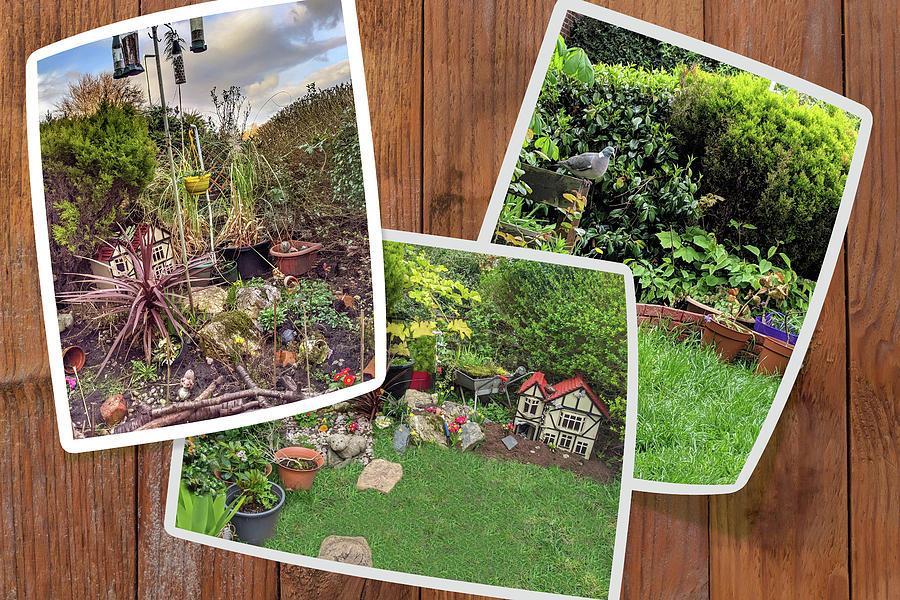 Gardens Contest Digital Art