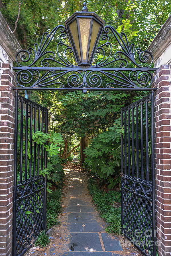 Gates Of Charleston - Iron Craftsmanship Photograph