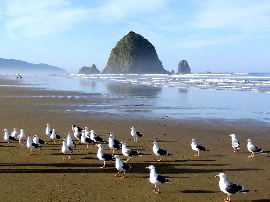 Gathering Of The Gulls by Will Borden