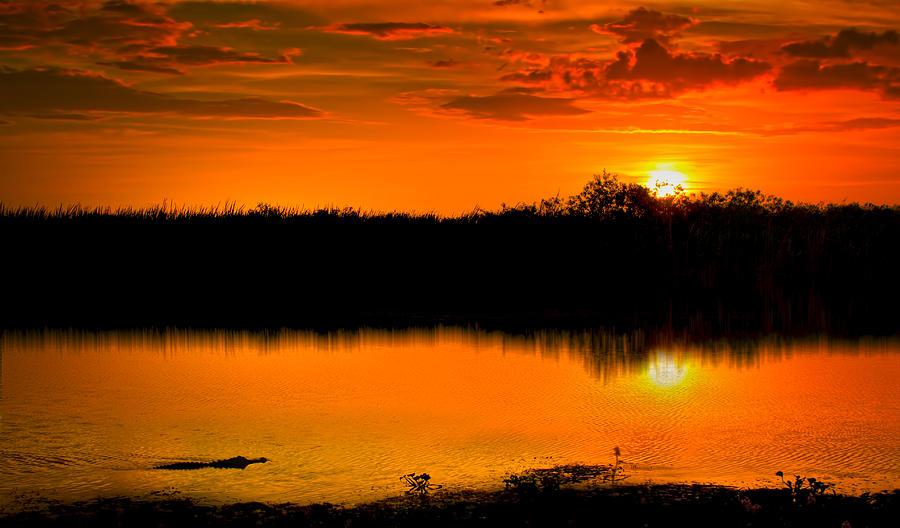 Gator Sunset Photograph
