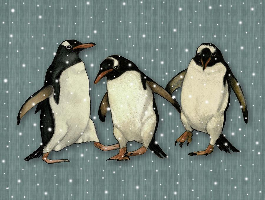 Gentoo Penguins In Snow Drawing