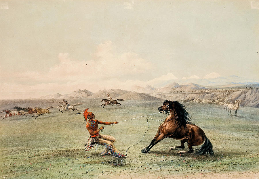 George Catlin American 1796 1872 North American Indian Portfolio  Catching The Wild Horse Plate 4 18 Painting