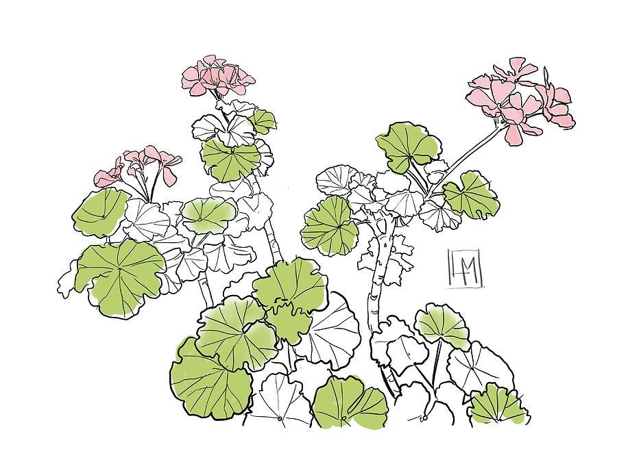 Geraniums Painting