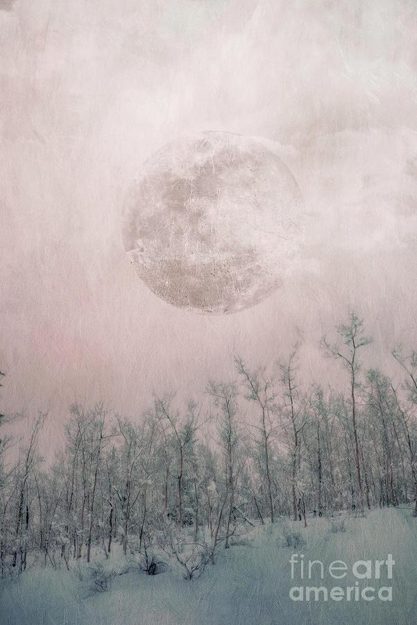 Ghost of a moon by Priska Wettstein