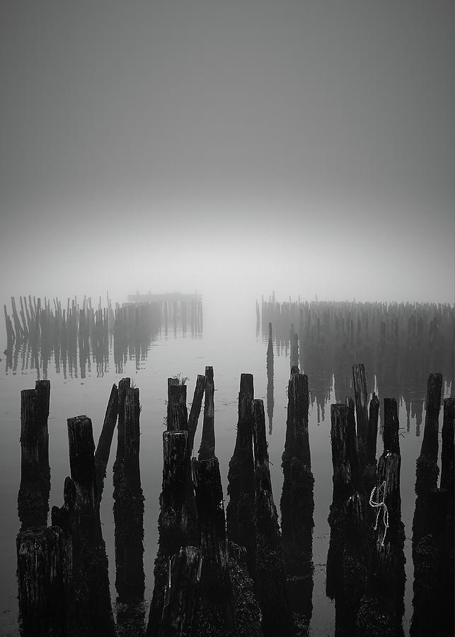 Ghost Pilings 2 by Bob Orsillo