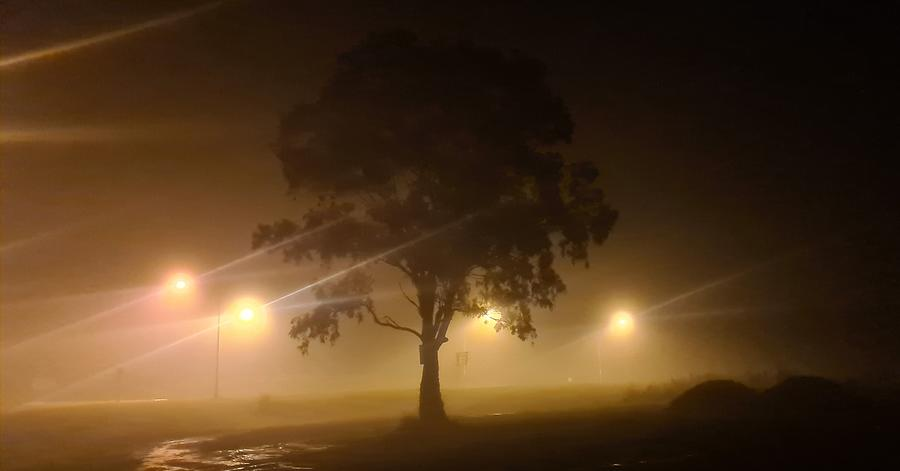 Ghostly Night Photograph
