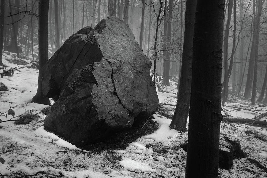 Giant Rock In The Woods Photograph