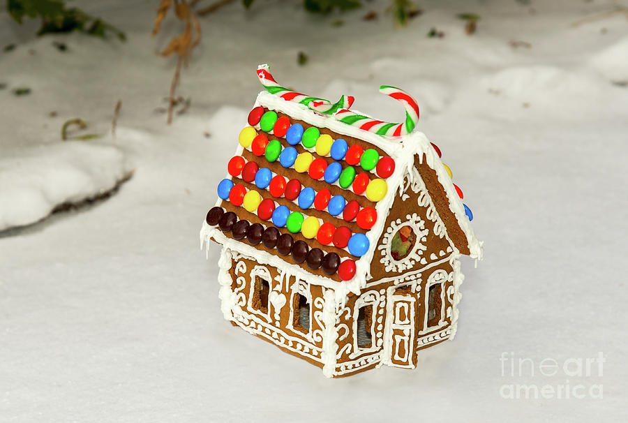 Gingerbread Cookie House by Les Palenik