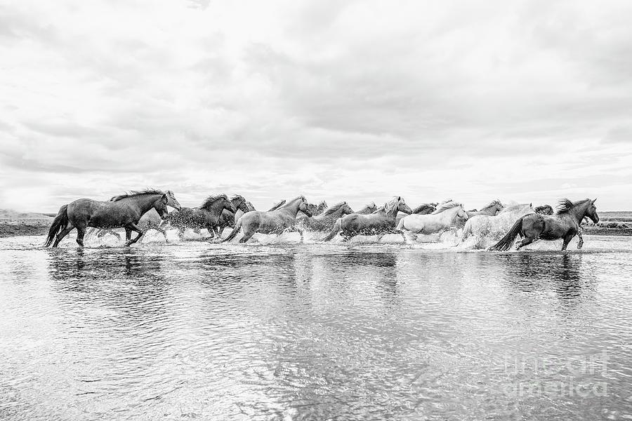 Glacial Runoff Photograph