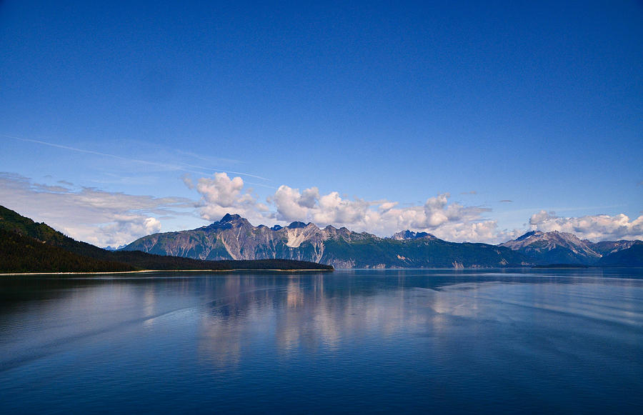 Glacier Bay National Park, Alaska-24 by Alex Vishnevsky