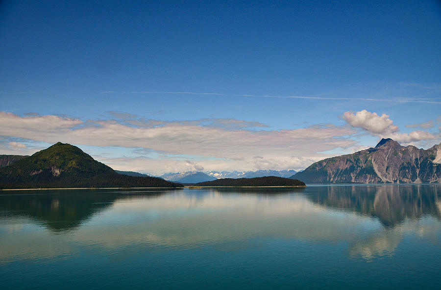 Glacier Bay National Park, Alaska-26 by Alex Vishnevsky