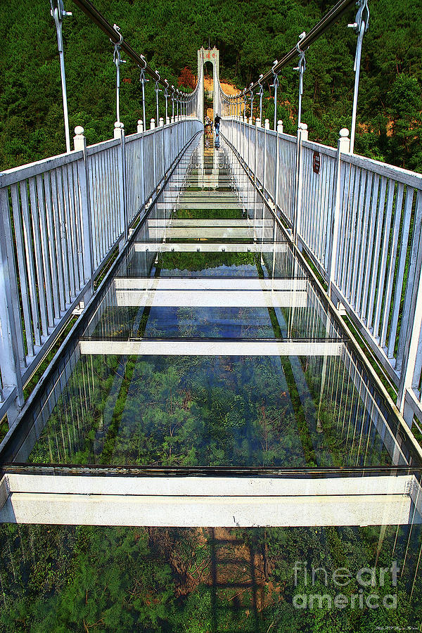 Glass Bridge Mixed Media