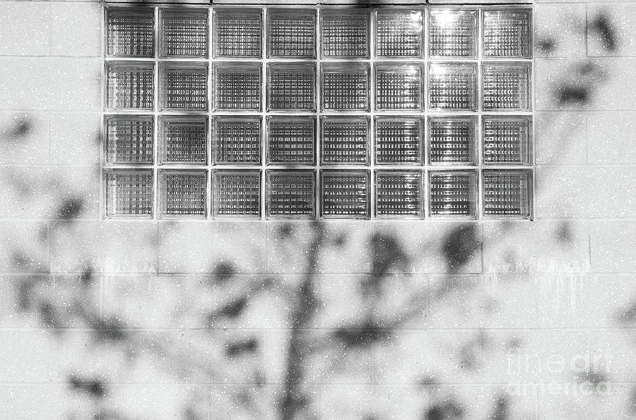 Glass Views by Len Tauro
