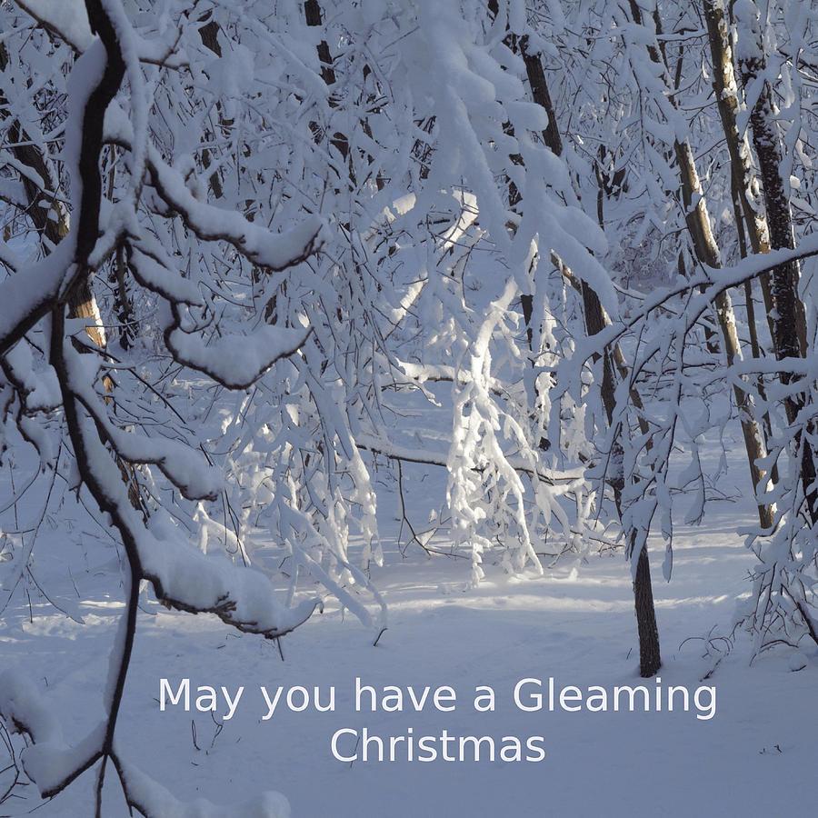 Gleaming Christmas by R  Allen Swezey