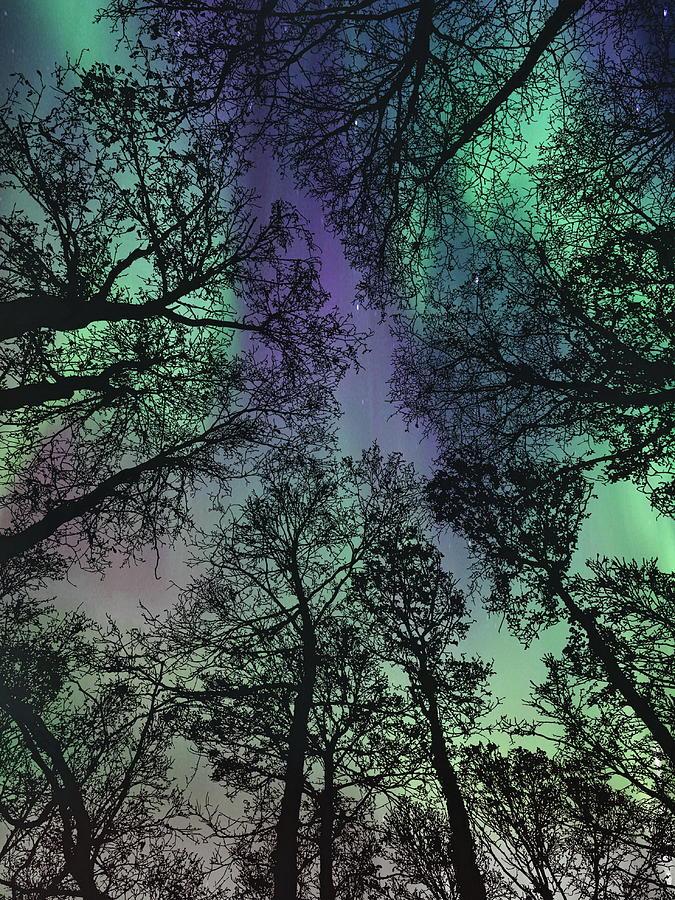 Aurora Borealis Photograph - Glorious Skies  by Andrea Kollo