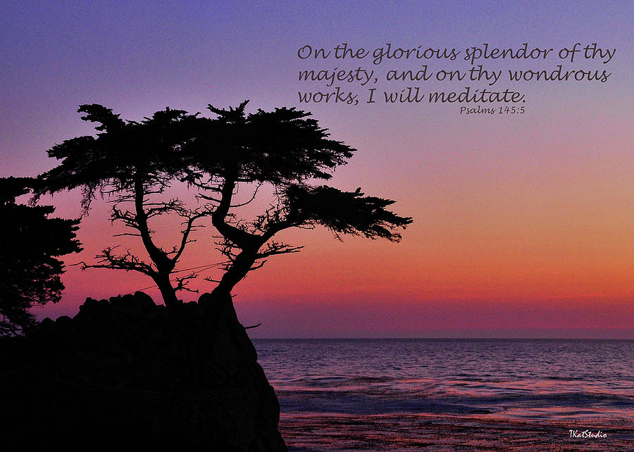 Glorious Splendor by Tim Kathka
