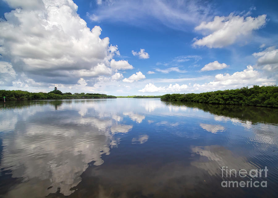 Summer Photograph - Glorious Summer Day by Felix Lai