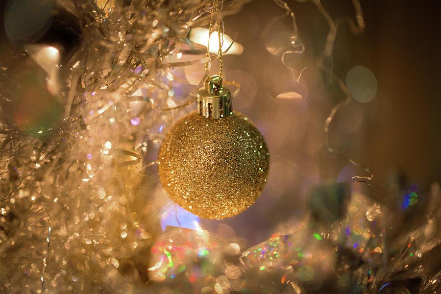 Gold Glitter Ball on Silver Tree by Lora J Wilson