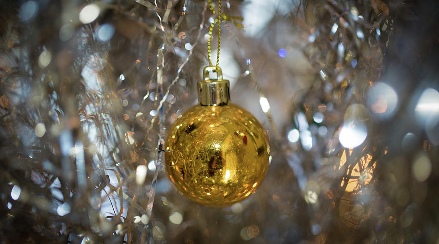 Golden Ball on a Silver Tree by Lora J Wilson