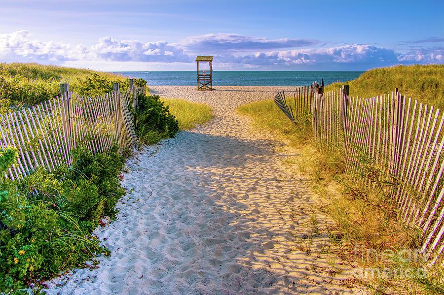 Golden Beach Path Photograph