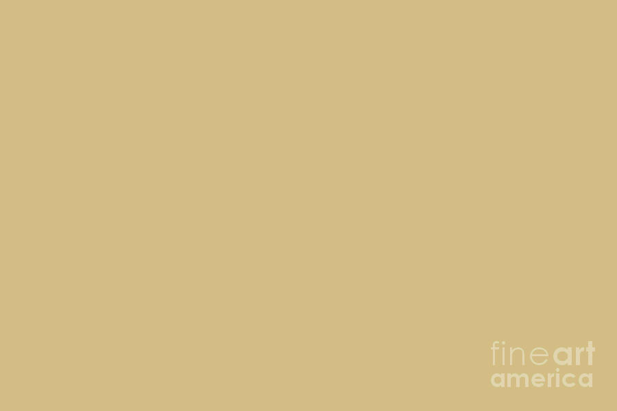 Taupe Digital Art - Golden Beige - Wheat - Warm Mid Tone Brown Solid Color  by PIPA Fine Art - Simply Solid