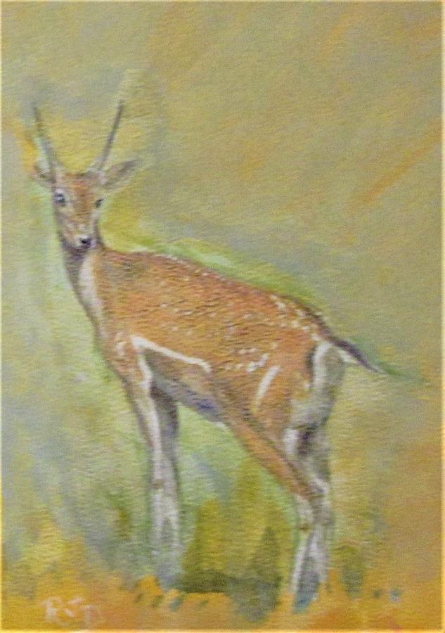 Golden Deer Painting