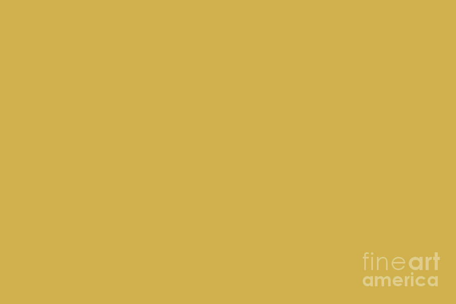 Download Golden Delight Yellow Solid Color Pairs To Sherwin Williams Nugget SW 6697 Digital Art by ...