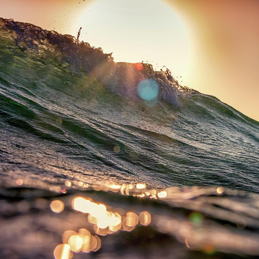 Golden Flares Photograph