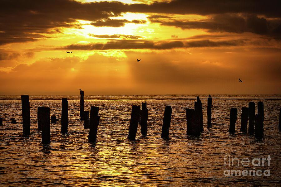 Golden Sunrise on OBX by Dan Carmichael