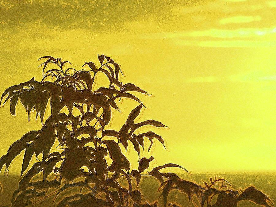 Golden Sunset in Grenada by Island Hoppers Art