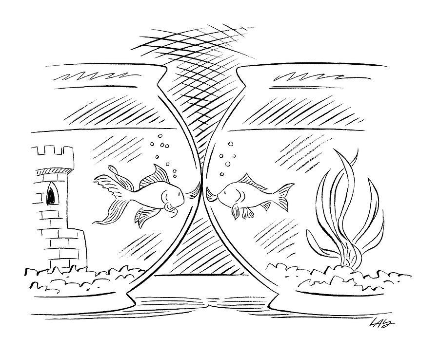 Goldfish Greeting Drawing by Carol Lay