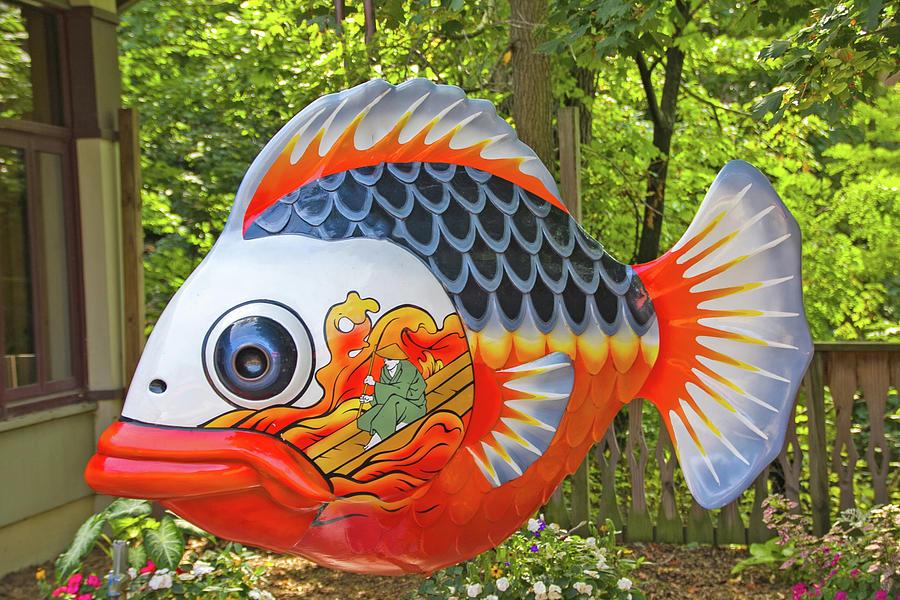goldfish set 2013 Pennsylvania 2 3202020 whites blues oranges Asian fisherman floating on air 8481. Photograph by David Frederick