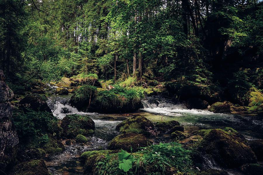 Gollinger Wasserfalls Photograph