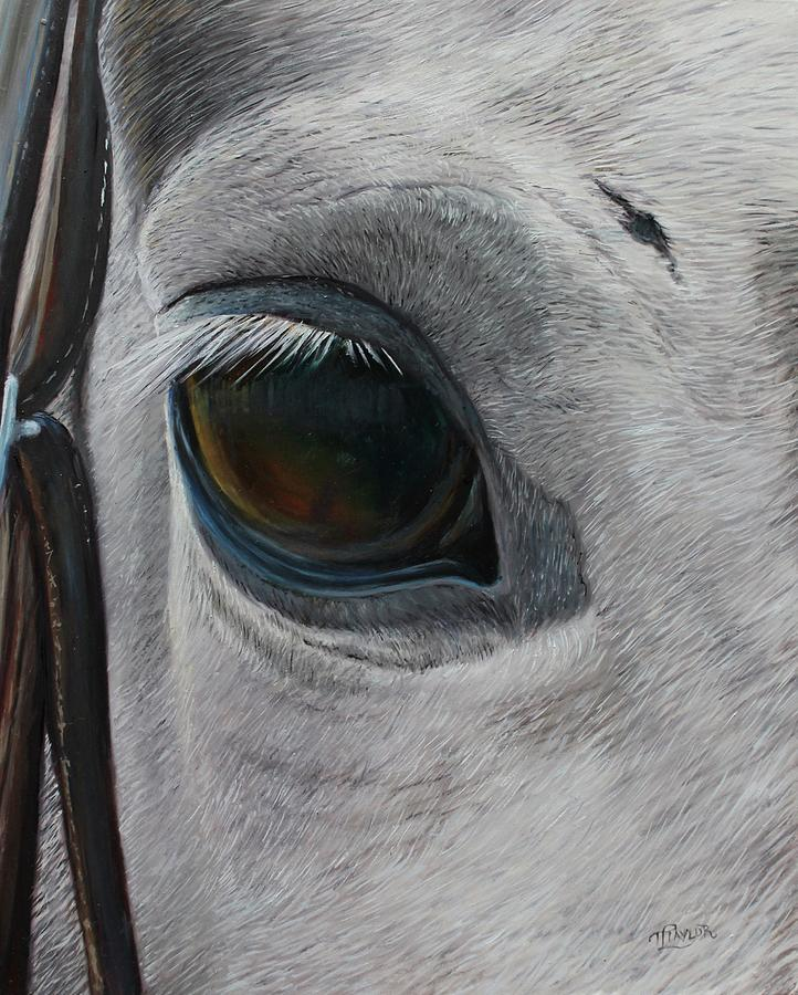 Got My Eye On You Painting by Tammy Taylor
