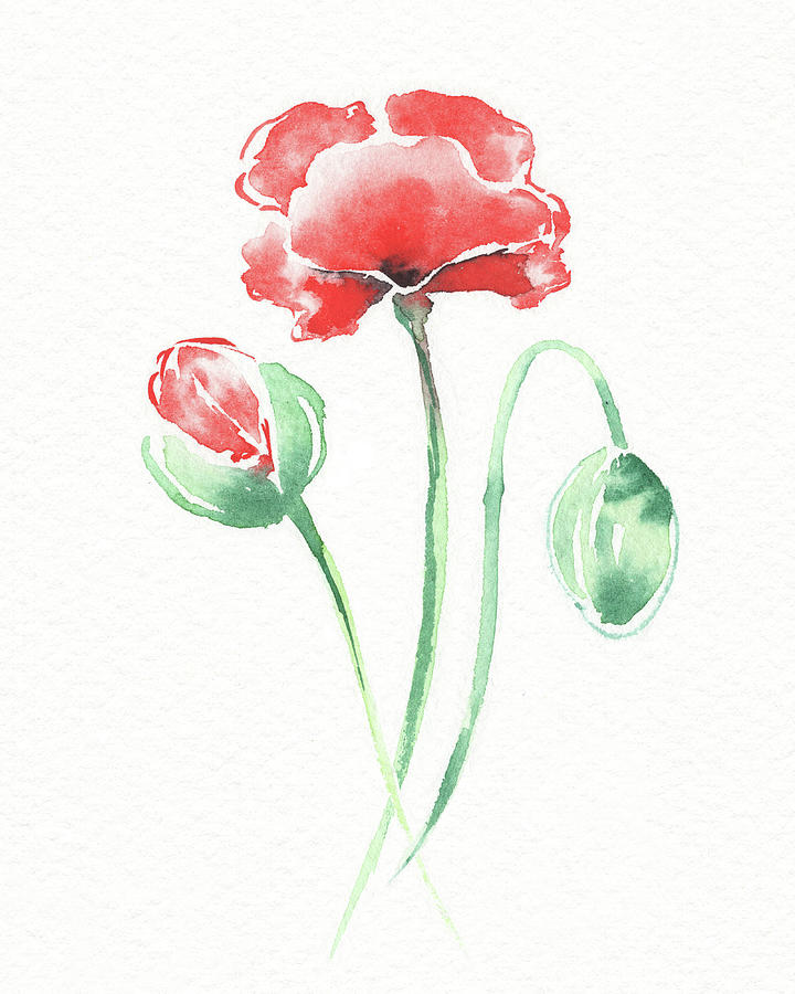 Graceful Beauty Botanical Watercolor Red Poppies Flowers IIi Painting