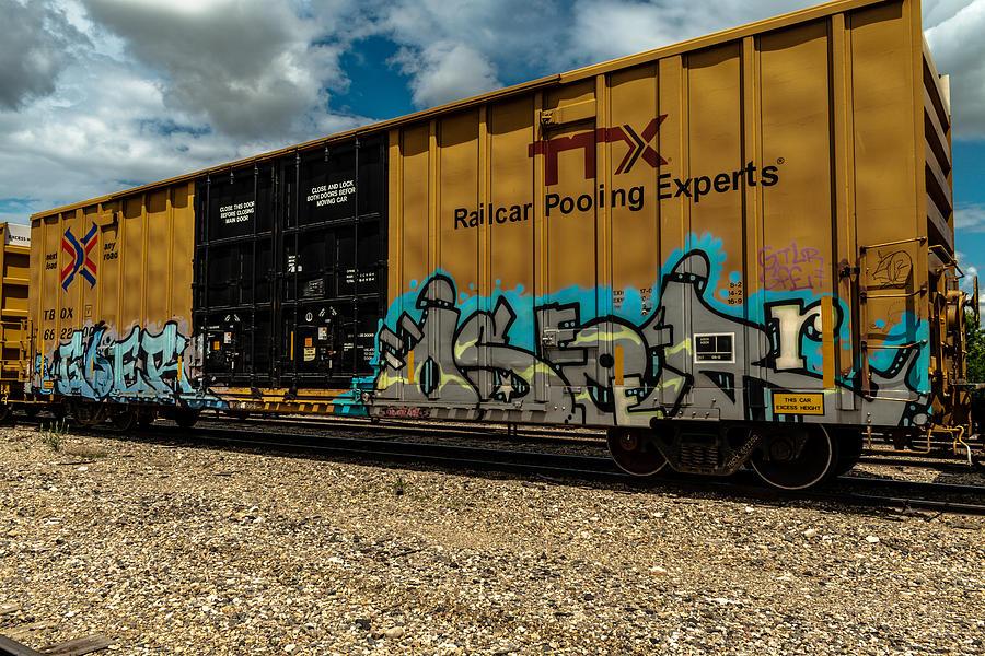 Graffiti Photograph - Graffiti Train Car  by Damon Dulewich
